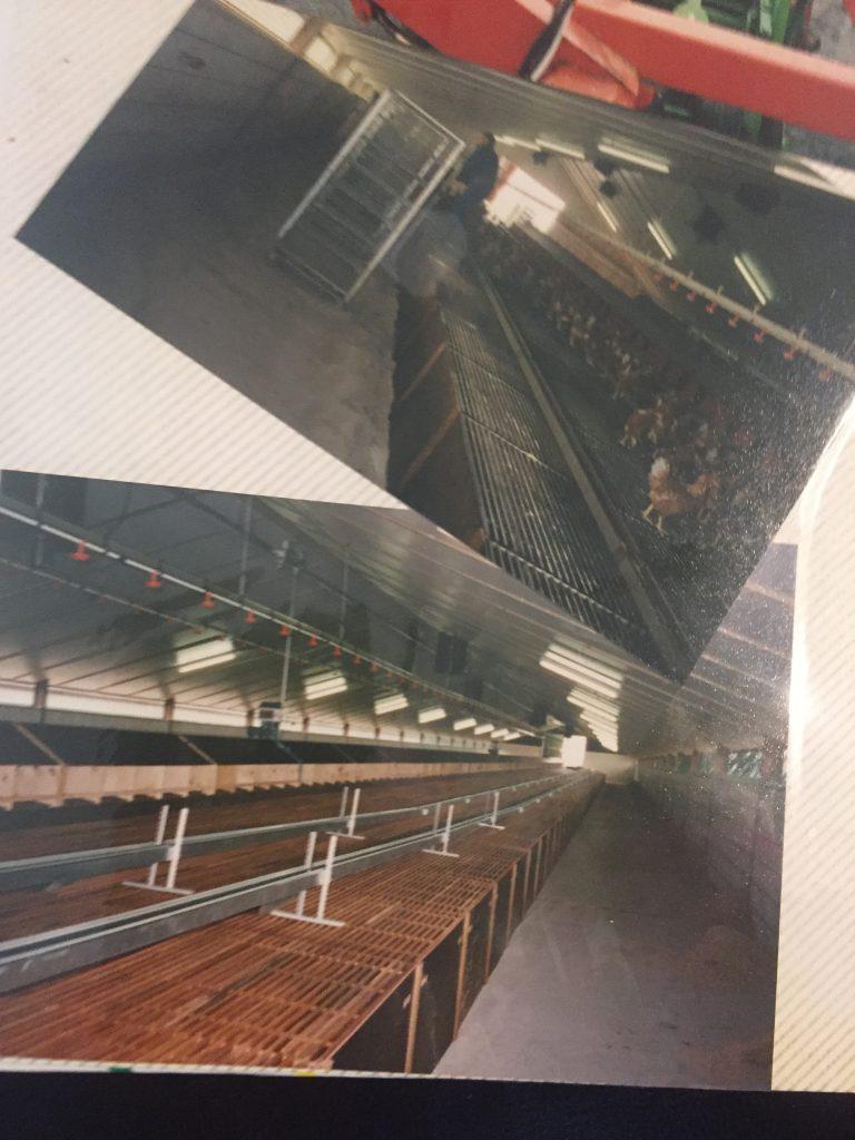 1996 bouw tweede kippenstal
