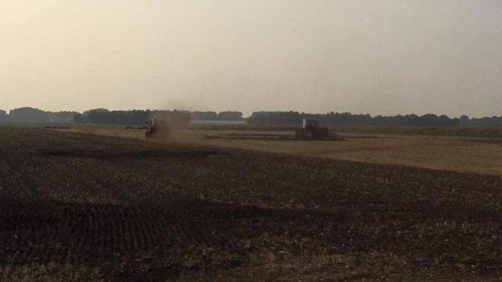 De bultjes uit elkaar de graan stoppel word met een schijveneg in stukjes gesneden. Nog even kilveren en de mest 💩er op. Dan de groenbemester er in 👌 #schukkert #landbouw